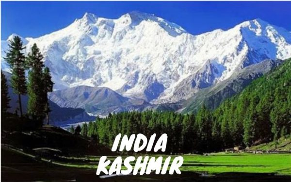 paket tour india kashmir