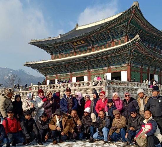 group tour korea