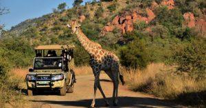 paket tour afrika
